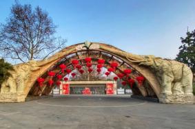 2021上海動物園門票多少錢-門票優惠政策