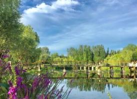 北京東郊森林公園適合騎車嗎