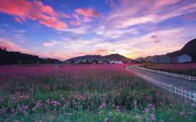 2021臺州神仙居風景區門票多少錢-怎么停車