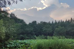 淮南龙湖公园门票价格 公园有哪些景点