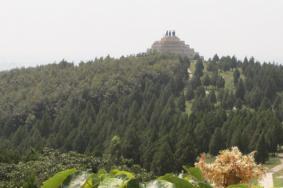 2021紫微山国家森林公园旅游攻略 紫微山国家森林公园门票交通天气