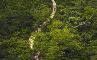 三岭山国家森林公园门票 里面有什么好玩的
