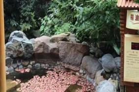 2021浴龍谷溫泉度假區門票交通及地址 浴龍谷溫泉度假區旅游攻略