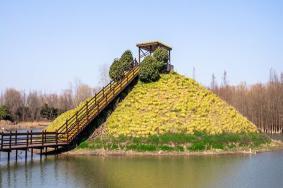 西沙国家湿地公园开放了吗-门票多少钱