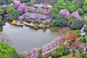 柳侯公园的景点有什么-门票多少钱