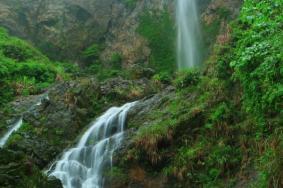 2021龍山森林公園旅游攻略 龍山森林公園門票交通天氣