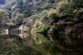 2021大乘山森林公園旅游攻略 大乘山森林公園門票交通天氣