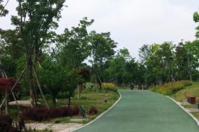 2021鵑湖公園旅游攻略 鵑湖公園門票交通天氣