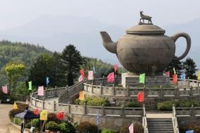 2021羊巖山茶文化園旅游攻略 羊巖山茶文化園門票交通天氣
