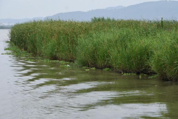 漩門灣國家濕地公園在哪里-門票多少錢