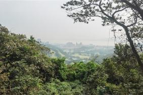 2021黃山魯森林公園簡介地址交通及游玩攻略
