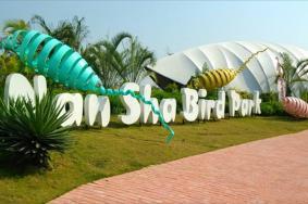 2021南沙水鳥世界生態公園營業時間地址交通及游玩攻略