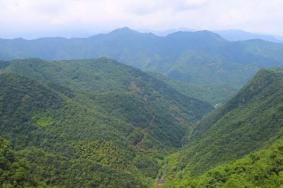 2021中坡山森林公園旅游攻略 中坡山森林公園門票交通天氣