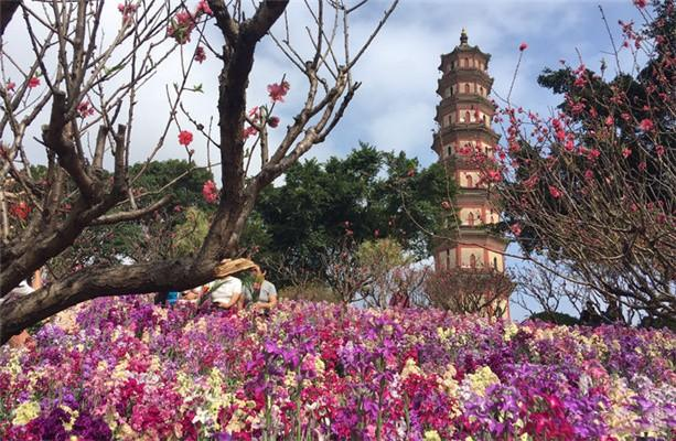 2021廣州蓮花塔地址交通及景區介紹