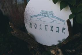 2021南京失恋博物馆门票地址开放时间及景区介绍