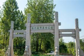 2021揚州西郊森林公園門票地址交通及游玩攻略