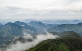 慶元有什么好玩的景點 百山祖海拔多少米