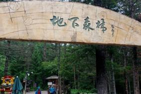 2021长白山地下森林地址及攻略