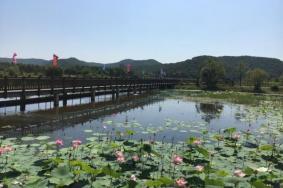 2021吉林大石头亚光湖国家湿地公园门票及特色