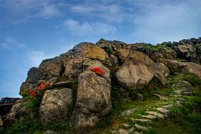2021玉華山風景區在哪里 玉華山風景區旅游攻略