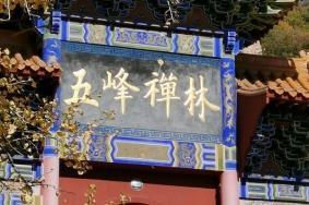 2021遵化禅林寺古银杏风景园
