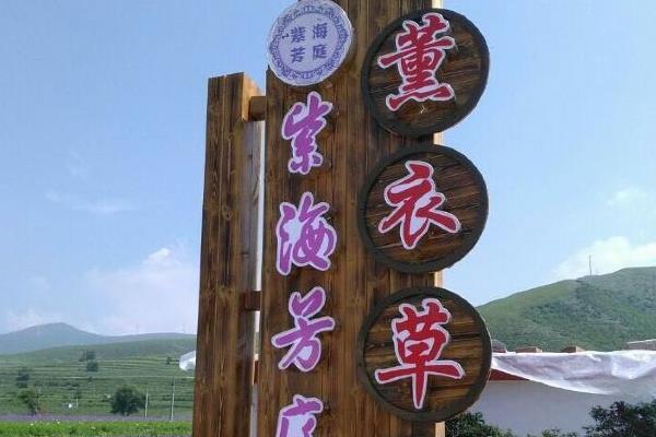 2021邯郸紫海芳庭熏衣草庄园门票-地点