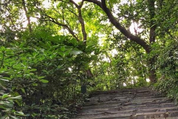 南京免费爬山的地方有哪些