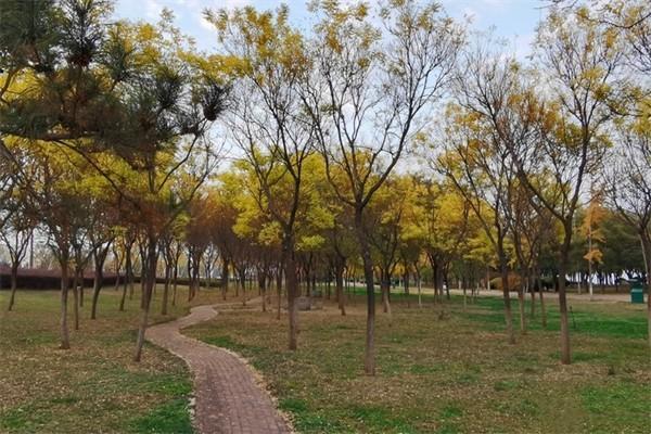 2021临沂人民公园门票电话地址开放时间及景区介绍