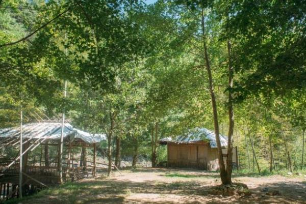 宁波四明山国家森林公园门票多少钱 四明山国家森林公园游玩攻略