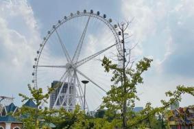 2021上海旅游節錦江樂園半價活動時間