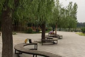 2021三门峡黄河公园开放时间地址及攻略