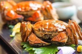 苏州大闸蟹几月份最好吃