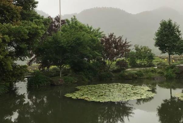 杭州旅游必去景点推荐