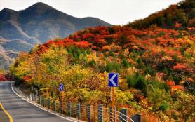 北京秋天最美自駕游路線