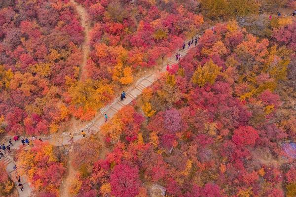 北京秋天最美自驾游路线