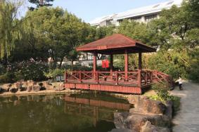 泗泾古镇在哪里门票多少及游玩攻略