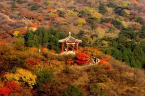 2021北京香山红叶门票多少钱一张 附观赏路线