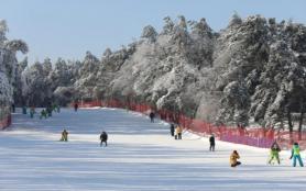長春滑雪場哪個最出名 2021長春滑雪場哪個好玩