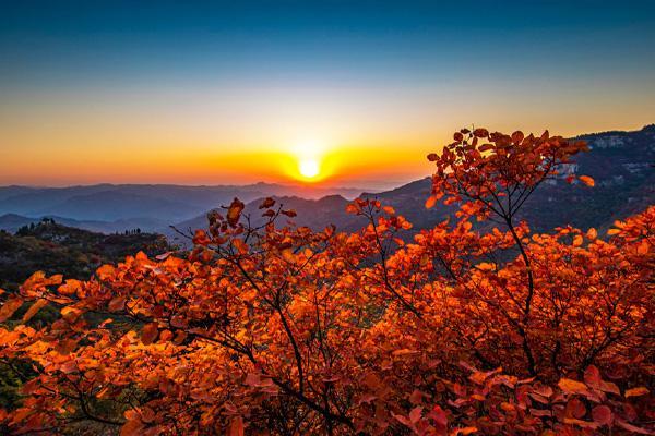 山東紅葉景區有哪些 山東紅葉最佳觀賞地